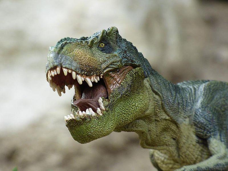 Wieso Sind Dinosaurier Ausgestorben Krokodile Aber Nicht
